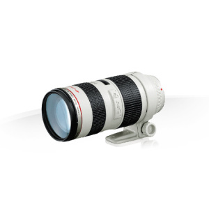 Alquiler objetivo canon 70-200 f2.8 Madrid Visualrent